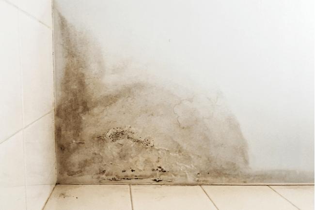 En bild på en vägg med fuktskador