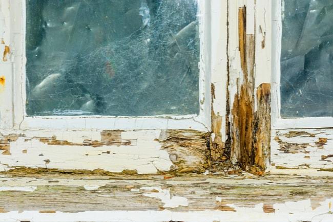 närbild på ett fönster med ruttnande trä