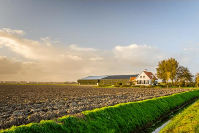 eftermiddagssol över jordbruksåker med hus och ladugård i bakgrunden
